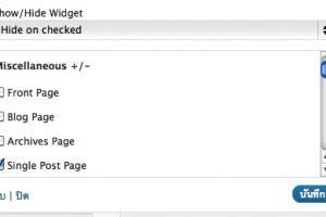 ปลั๊กอินควบคุม Widgets ให้แสดงเฉพาะบางหน้า