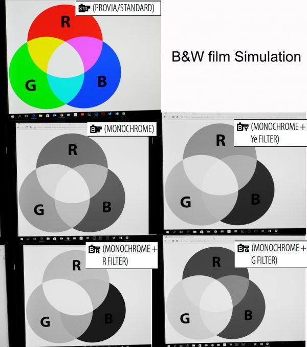 Fujifilm black and white simulation