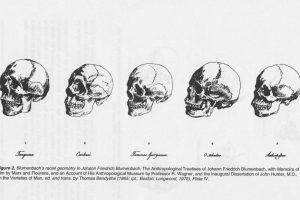 Biological races in Human หรือ Human subspecies ถือเป็น pseudoscientific