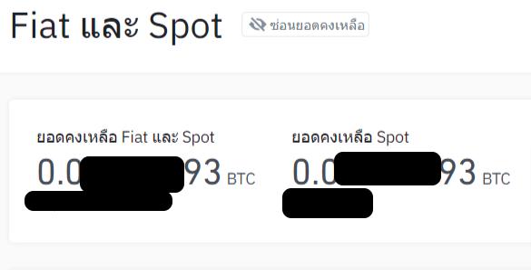 ยอด Bitcoin ในกระเป๋า